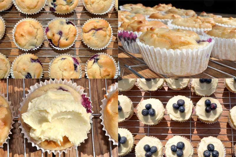 Lemon and Blueberry Cupcakes 0001